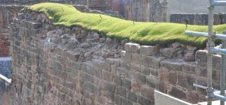 capped wall.jpg